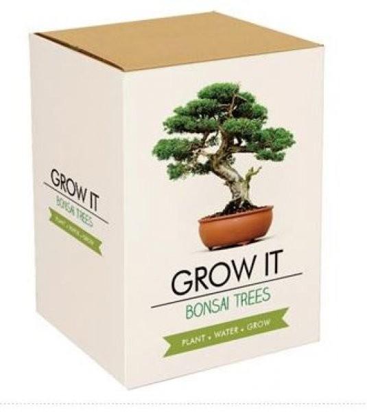 Grow it - Bonsai Grow it - Bonsai